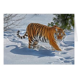 Tigre en tarjeta profunda del día de fiesta de la