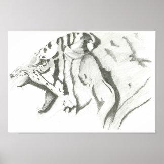Tigre enojado póster