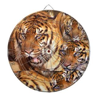 Tigre Eyes_