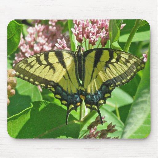 Tigre femenino Swallowtail Mousepad Tapete De Raton
