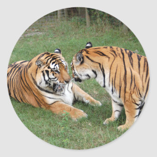 Tigre Friends-008 Pegatina Redonda