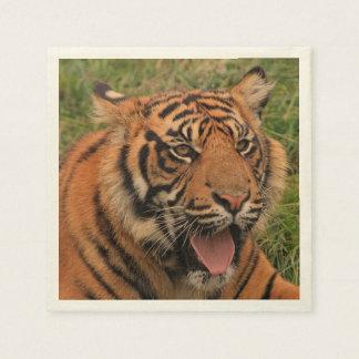 tigre fuerte servilletas de papel