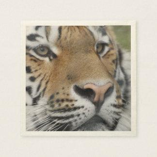tigre fuerte servilletas desechables