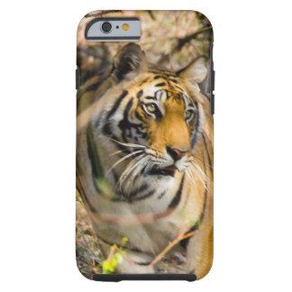 Tigre Funda De iPhone 6 Tough