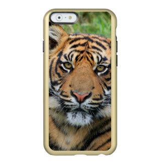 Tigre Funda Para iPhone 6 Plus Incipio Feather Shine