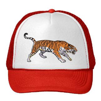 tigre gorro