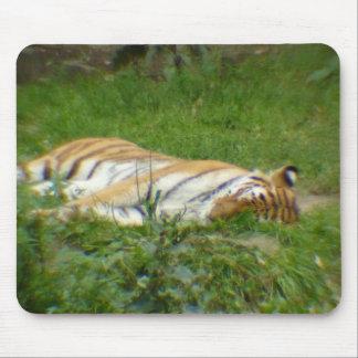 Tigre II Alfombrillas De Ratones