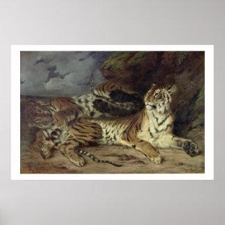 Tigre joven que juega con su madre, 1830 (aceite e póster