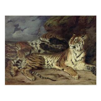 Tigre joven que juega con su madre, 1830 (aceite postales