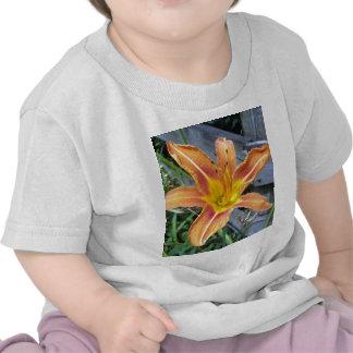 Tigre Lilly Camiseta
