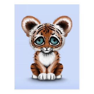 Tigre lindo Cub de bebé con los ojos azules en azu Tarjeta Postal