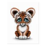 Tigre lindo Cub de bebé con los ojos azules en bla Tarjeta Postal