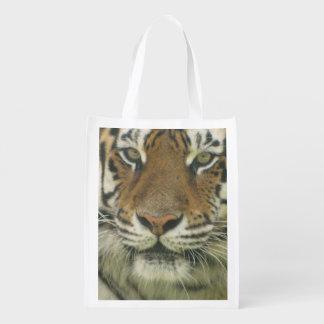 Tigre lindo bolsa para la compra