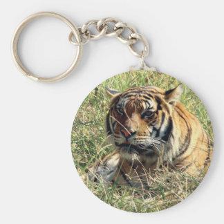 Tigre Llavero Personalizado