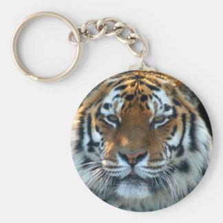 Tigre majestuoso de Sumatran Llavero Redondo Tipo Pin