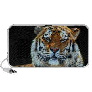 Tigre majestuoso de Sumatran PC Altavoces