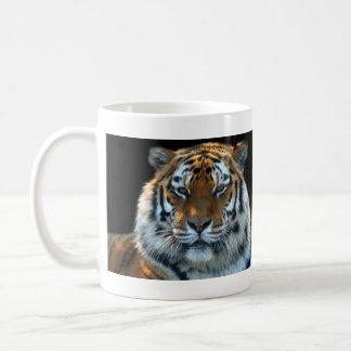 Tigre majestuoso de Sumatran Taza Clásica