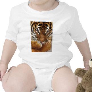 Tigre malayo #1 traje de bebé