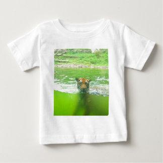 Tigre malayo camisas