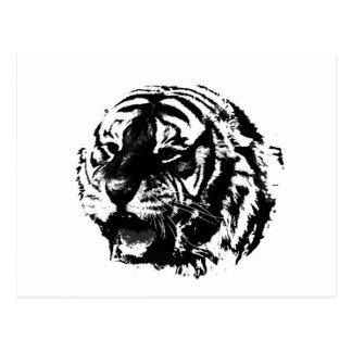 Tigre negro y blanco del rugido postal