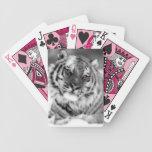 Tigre observado rosa baraja de cartas