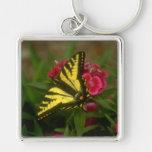 Tigre occidental Swallowtail (7) Llavero Personalizado