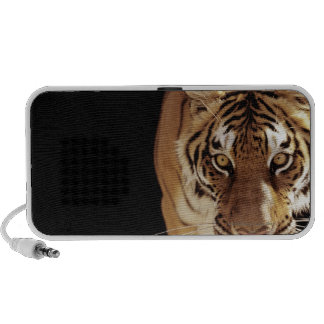 Tigre (Panthera el Tigris) Notebook Altavoces