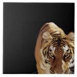 Tigre (Panthera el Tigris) Azulejo Cuadrado Grande
