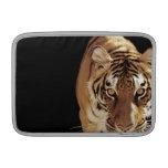 Tigre (Panthera el Tigris) Fundas MacBook