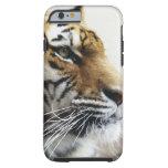 Tigre. Parque zoológico de Asahiyama, Hokkaido, Funda De iPhone 6 Tough