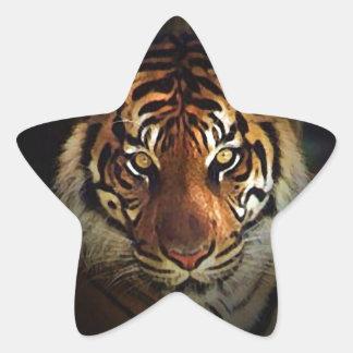 Tigre Colcomanias Forma De Estrellaes Personalizadas