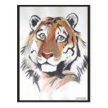 Tigre pensativo postal
