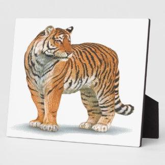 Tigre Placas De Madera
