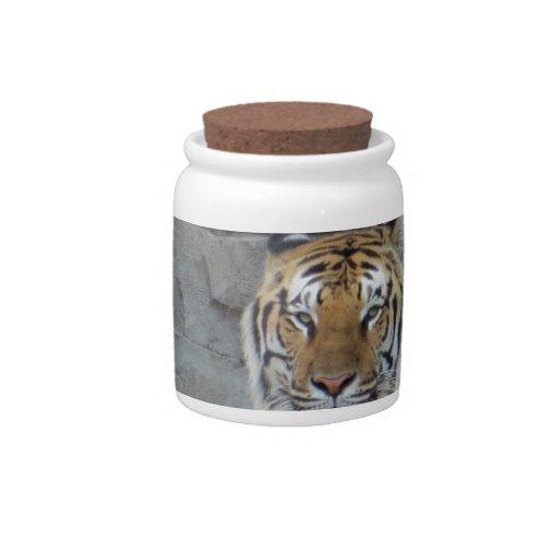 Tigre Platos Para Caramelos