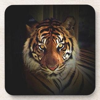Tigre Posavasos