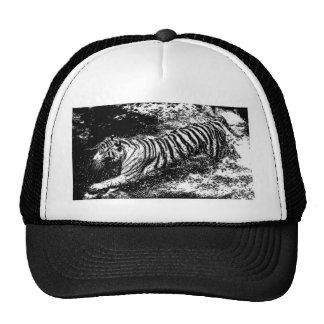 Tigre que ataca negro y blanco gorro