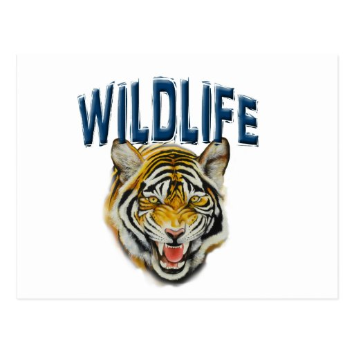 Tigre que gruñe con fauna de las palabras postales