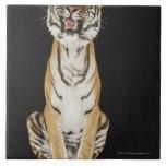 Tigre que se sienta en la plataforma azulejos