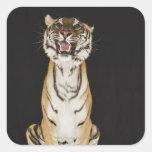 Tigre que se sienta en la plataforma colcomanias cuadradases