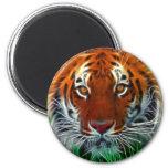 Tigre raro de Sumatran de Indonesia Imán Redondo 5 Cm