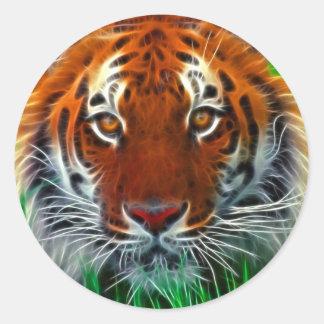 Tigre raro de Sumatran de Indonesia Pegatina Redonda