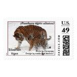 Tigre siberiano 1 sellos
