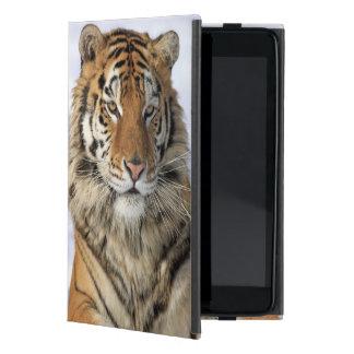 Tigre siberiano, altaica del Tigris del Panthera,  iPad Mini Carcasas