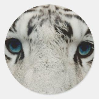 Tigre siberiano blanco pegatina redonda
