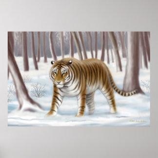 Tigre siberiano en poster del invierno póster
