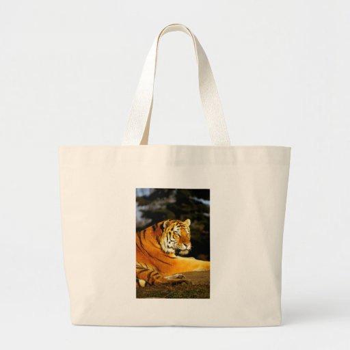 Tigre siberiano por la tarde bolsas