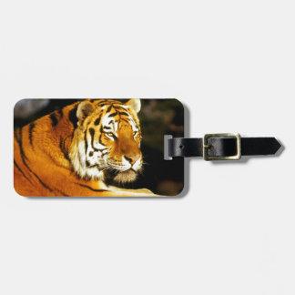 Tigre siberiano por la tarde etiqueta de maleta