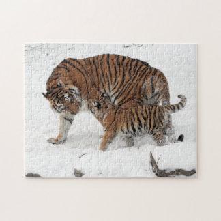 Tigre siberiano y rompecabezas de Cub