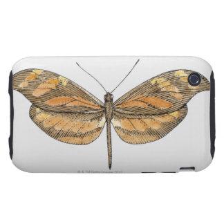 Tigre suramericano tough iPhone 3 protector