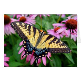 Tigre Swallowtail de la mariposa Tarjeta De Felicitación